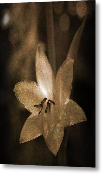 Rustic Bloom Metal Print