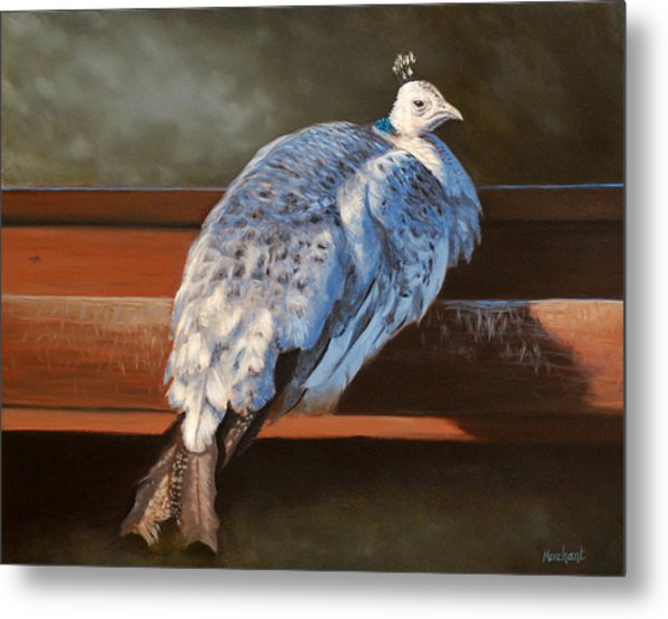 Metal Print featuring the painting Rustic Elegance - White Peahen by Linda Merchant