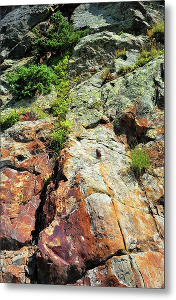 Rusty Rock Face Metal Print