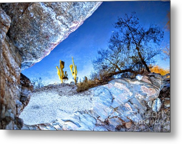 Sabino Canyon Reflection In Pool Metal Print