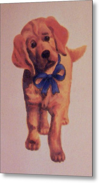 Sad Puppy Metal Print