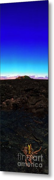 Saddle Road Humuula Lava Field Big Island Hawaii  Metal Print