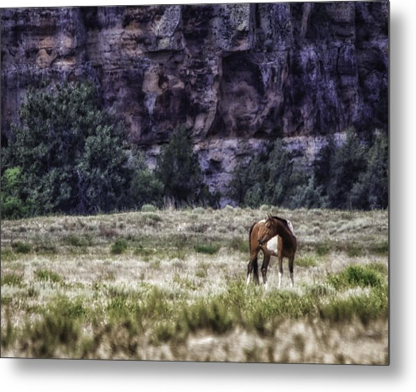 Safe In The Valley Metal Print