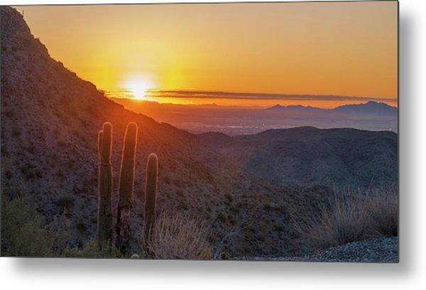 Saguaro Sunrise Metal Print