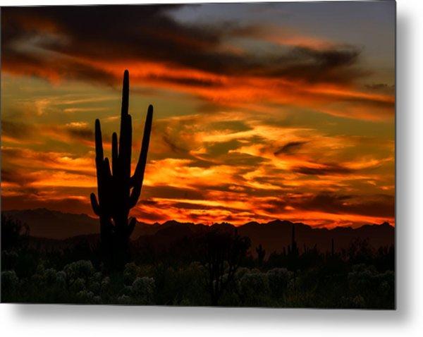 Saguaro Sunset H51 Metal Print