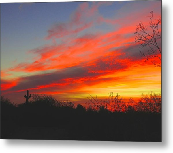 Saguaro Winter Sunrise Metal Print