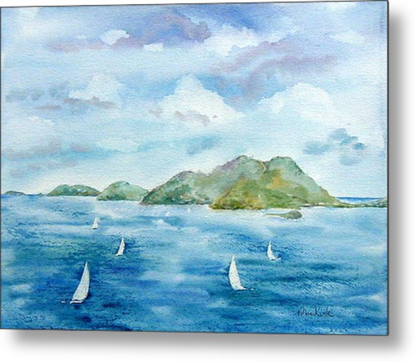 Sailing By Jost Metal Print