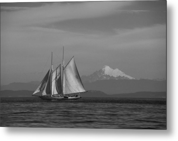 Sailing In Pacific Northwest Metal Print