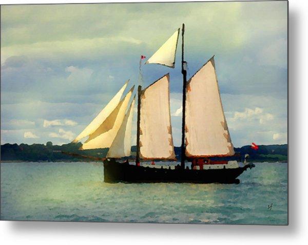 Sailing The Sunny Sea Metal Print