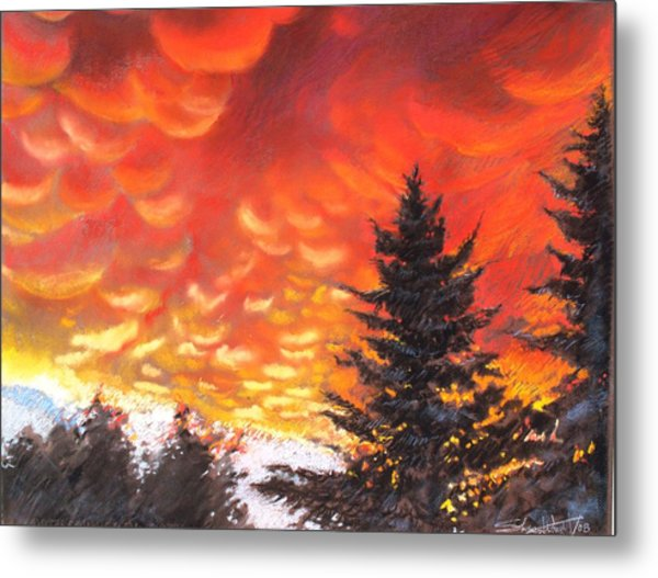 Sailors Delight Metal Print by Sharon Wright