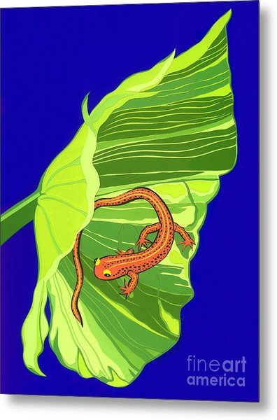 Salamander Metal Print by Lucyna A M Green
