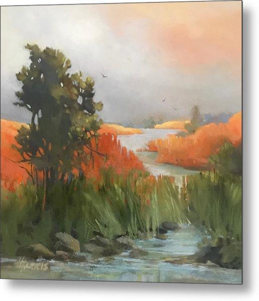 Salmon Creek Metal Print