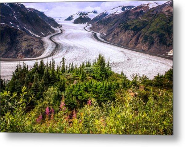 Salmon Glacier Metal Print