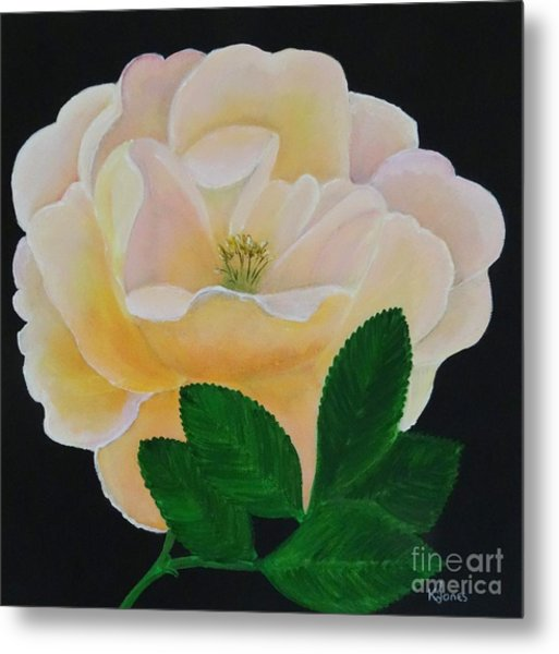 Salmon Pink Rose Metal Print