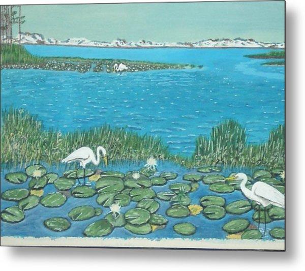 Salt Marsh Egrets Metal Print