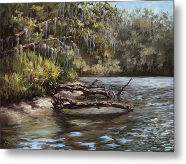 Salt Springs Run Metal Print