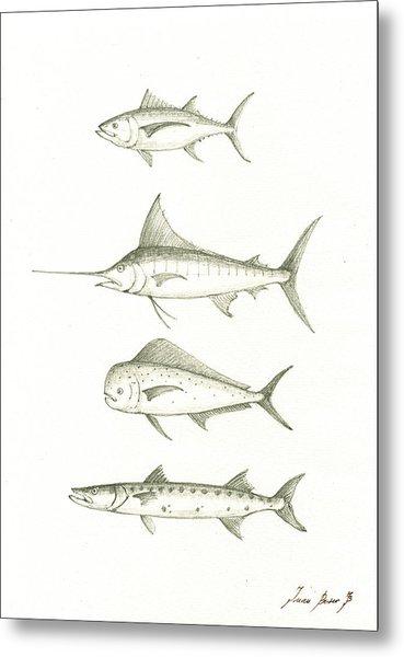Saltwater Gamefishes Metal Print