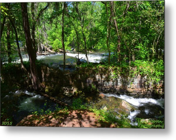 Metal Print featuring the photograph Saluda River Columbia Sc by Lisa Wooten