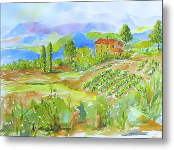 Vineyard At San Gimignano Metal Print