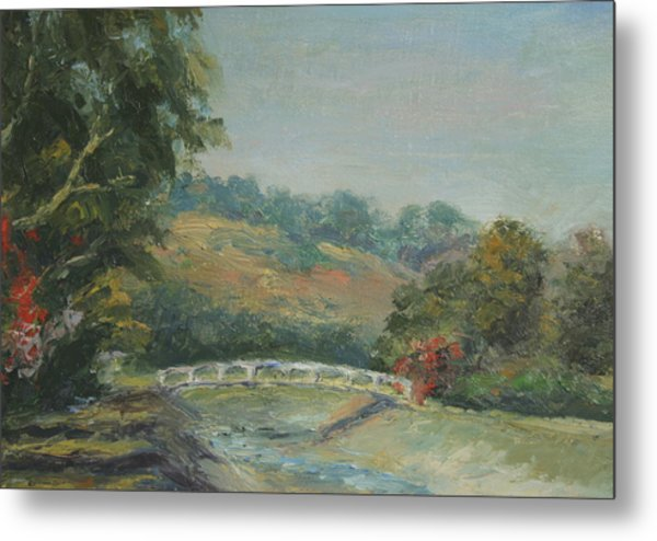 San Juan Creek Metal Print