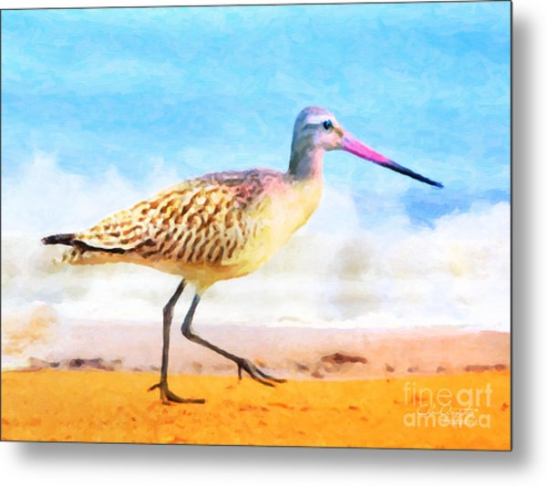 Sand Between My Toes ... Metal Print
