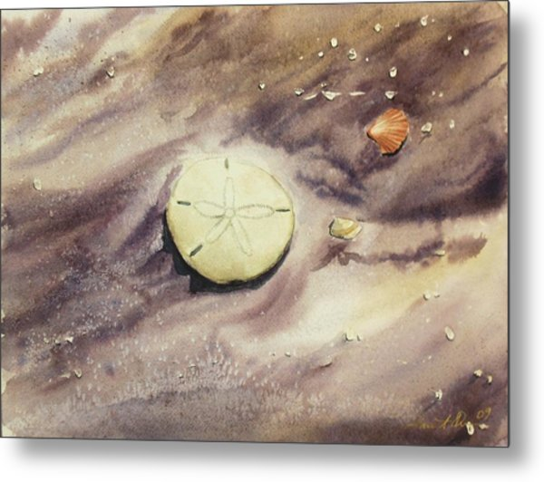 Sand Dollar Metal Print by Lane Owen