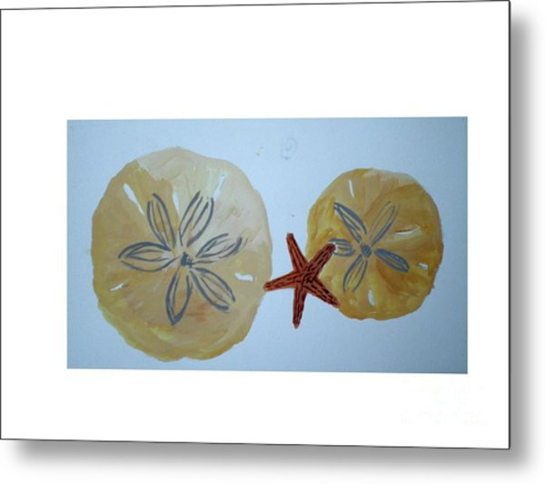 Sand Dollars With Star Fish Metal Print by Hal Newhouser