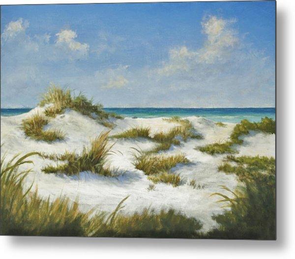 Sand Dunes Morning By Alan Zawacki Metal Print