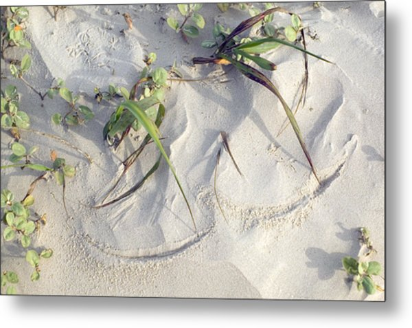 Sand Sumie One Metal Print by Clyde Replogle