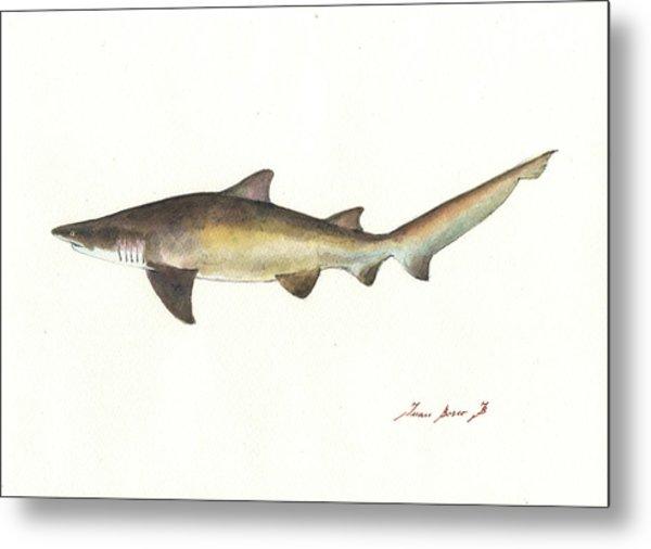 Sand Tiger Shark Metal Print