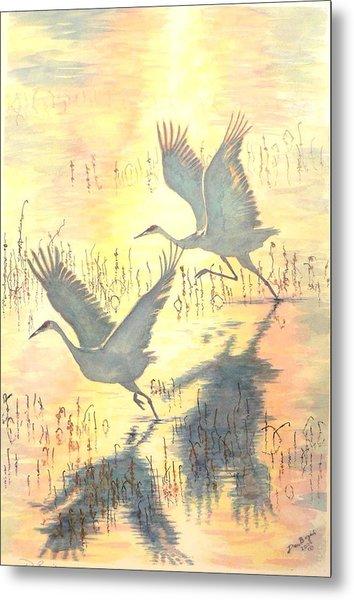 Sandhill Cranes Metal Print by Dan Bozich