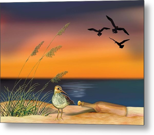 Sandpiper For Angel Metal Print