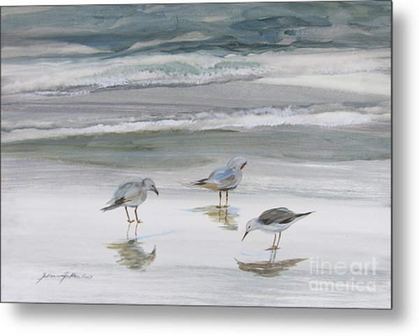 Sandpipers Metal Print