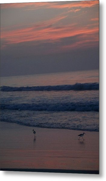 Sandpipers On The Beach Metal Print
