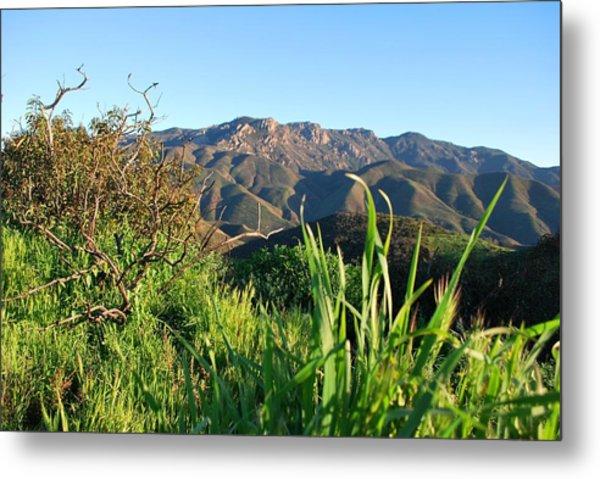 Santa Monica Mountains Green Landscape Metal Print