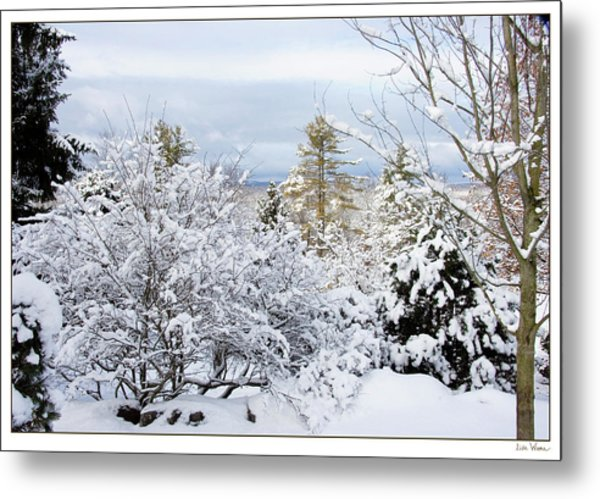 Saratoga Winter Scene Metal Print