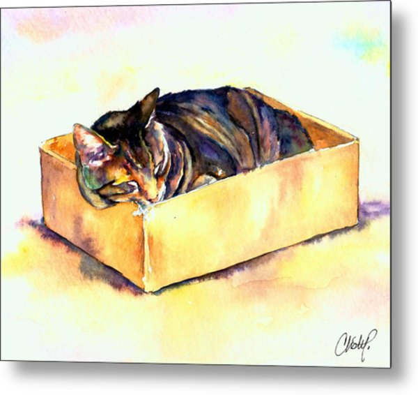 Sassy Sleeping Metal Print