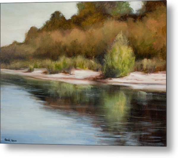 Satilla River Reflections Metal Print