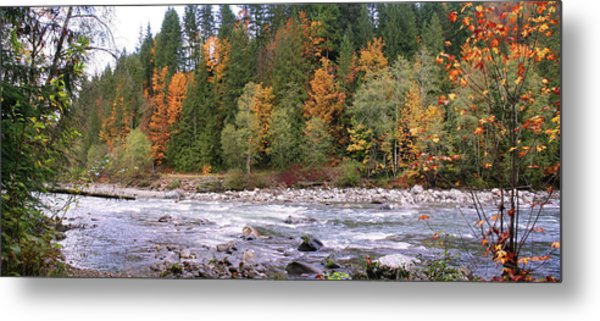 Sauk River Fall Colors Panorama Metal Print by Mary Gaines