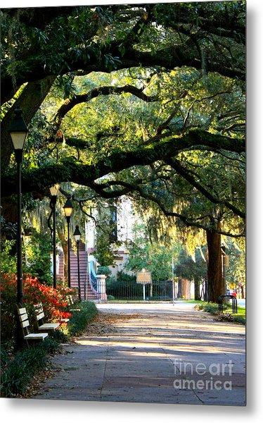 Savannah Park Sidewalk Metal Print