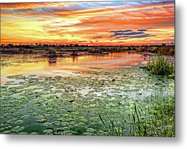 Savannas Sunset Metal Print
