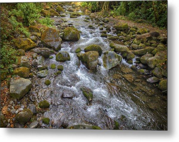 Savegre River - Costa Rica 2 Metal Print