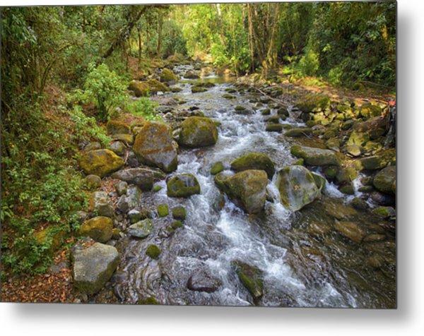 Savegre River - Costa Rica 3 Metal Print