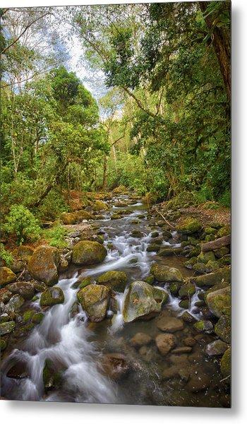 Savegre River - Costa Rica 5 Metal Print