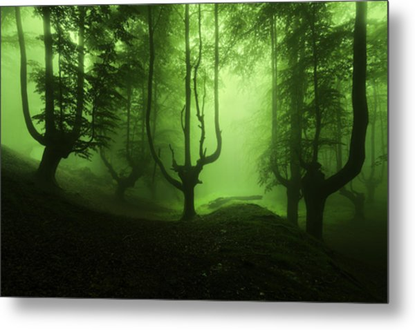 The Funeral Of Trees Metal Print