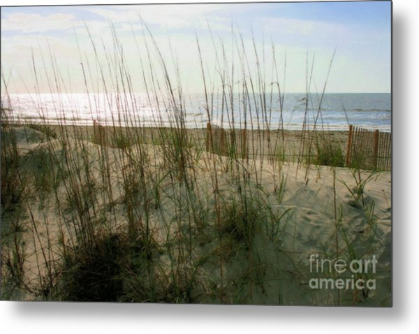 Scene From Hilton Head Island Metal Print