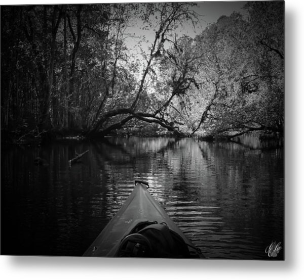 Scenes From A Kayak, No. 8 Metal Print