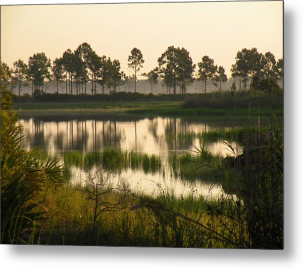 Scenic Reflections After Sunrise Metal Print by Rosalie Scanlon