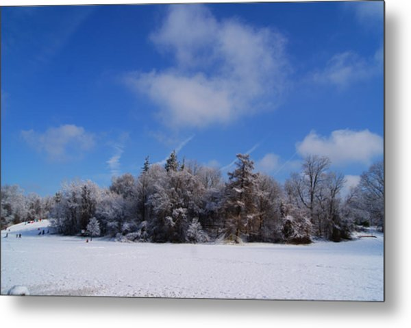 Scenic Winter Metal Print
