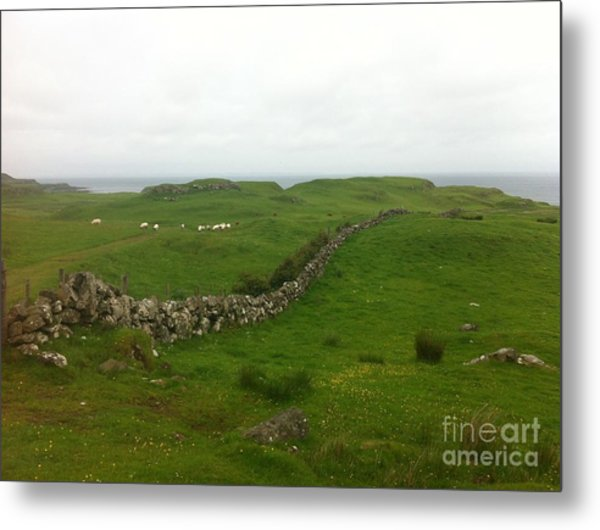 Scottish Wall Metal Print